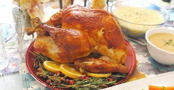 為什麼我不需要火雞共渡感恩節